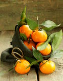Fresh ripe orange mandarins (tangerines) Stock Photo