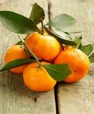 Fresh ripe orange mandarins (tangerines) Stock Photos
