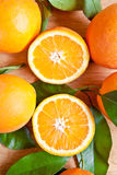 Fresh ripe oranges. As a background Royalty Free Stock Images