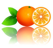 Fresh ripe oranges with leaves Stock Images