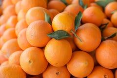 Fresh ripe oranges for sale. Stock Photo