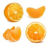 Fresh ripe oranges royalty free illustration