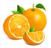 Fresh ripe oranges Stock Photo