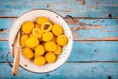 Fresh ripe organic apricots in colander  above view Stock Photos