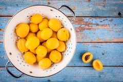Fresh ripe organic apricots in colander  above view Royalty Free Stock Photos