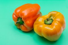 Fresh Ripe Organic Bell Peppers, a cultivar group of the species Capsicum annuum, isolated on green. Background stock image