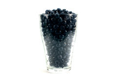 Fresh ripe organic bilberries. In a plastic glass Royalty Free Stock Photography