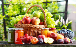 Fresh ripe organic fruits in the garden. Balanced. Diet Stock Images