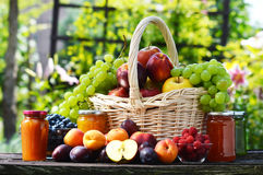 Fresh ripe organic fruits in the garden. Balanced diet Royalty Free Stock Photography