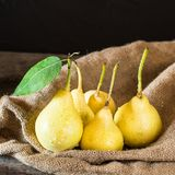 Fresh ripe organic pears on rustic wooden table, natural background, vega, diet food. Autumn harvest. Juicy fruits on bag. Fresh ripe organic pears on rustic stock image