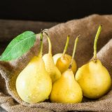Fresh ripe organic pears on rustic wooden table, natural background, vega, diet food. Autumn harvest. Juicy fruits on bag. Fresh ripe organic pears on rustic royalty free stock photography