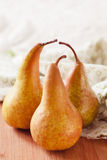 Fresh ripe organic pears Stock Photography