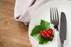 Fresh ripe organic red currant in plate. Royalty Free Stock Photo