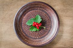 Fresh ripe organic red currant in plate. Royalty Free Stock Photos