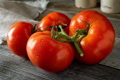 Fresh Ripe Organic Tomatoes. A group of fresh ripe organic tomatoes on a rustic farm harvest table Royalty Free Stock Photos