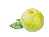 Fresh, ripe, organic whole grapefruit isolated Royalty Free Stock Image