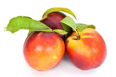 Fresh ripe peach , close up Stock Photo