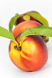 Fresh ripe peach , close up Royalty Free Stock Photos