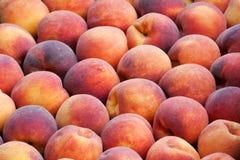 Fresh ripe peaches Stock Image