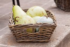 Fresh ripe pears in a wicker basket. Harvest of fresh ripe pears displayed in a wicker basket on a wall outdoors at a farmers market or for a quick delicious Royalty Free Stock Photos