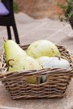 Fresh ripe pears in a wicker basket. Harvest of fresh ripe pears displayed in a wicker basket on a wall outdoors at a farmers market or for a quick delicious Royalty Free Stock Photo