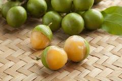 Fresh peeled quenepa fruit. Fresh ripe peeled quenepa fruit Royalty Free Stock Image
