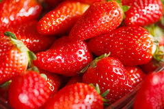 Fresh Ripe Perfect Strawberries.Selective focus Stock Image