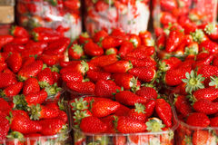 Fresh Ripe Perfect Strawberries.Selective focus Stock Photography