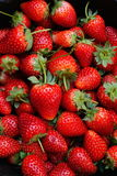 Fresh ripe perfect strawberry Royalty Free Stock Images