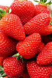 Fresh ripe perfect strawberry Stock Image