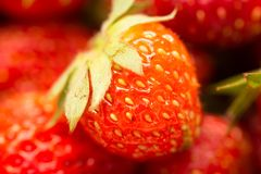Fresh ripe perfect strawberry - Food Frame Background . Royalty Free Stock Images