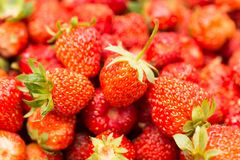 Fresh ripe perfect strawberry - Food Frame Background . Royalty Free Stock Photography