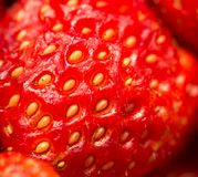 Fresh ripe perfect strawberry - Food Frame Background . Stock Images