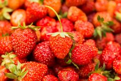 Fresh ripe perfect strawberry - Food Frame Background . Stock Photo