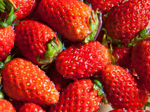 Fresh ripe perfect strawberry. Food Frame Background Stock Photography