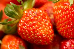Fresh ripe perfect strawberry - Food Frame Background Stock Images
