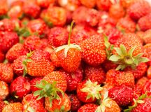 Fresh ripe perfect strawberry - Food Frame Background Stock Photo