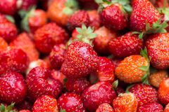 Fresh ripe perfect strawberry - Food Frame Background Stock Image