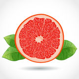 Fresh piece of grapefruit  on white Stock Photo