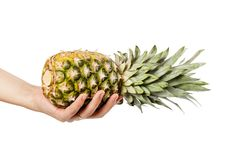 Fresh ripe pineapple isolated. On white. Food ingredients Royalty Free Stock Photos
