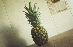 Fresh ripe pineapple Royalty Free Stock Image