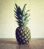 Fresh ripe pineapple Stock Image