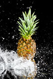 Fresh ripe pineapple with water drops isolated on black Royalty Free Stock Images