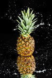 Fresh ripe pineapple with water drops isolated on black Stock Image