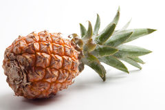 Fresh ripe pineapple on the white background Stock Image