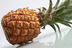 Fresh ripe pineapple on the white background Royalty Free Stock Photo