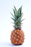 Fresh ripe pineapple on the white background Royalty Free Stock Photography