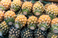 Fresh and ripe pineapples Royalty Free Stock Images