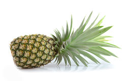 Fresh ripe pineapples Royalty Free Stock Image