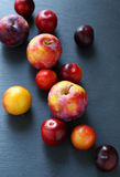 Fresh ripe plum on a gray background Royalty Free Stock Photos